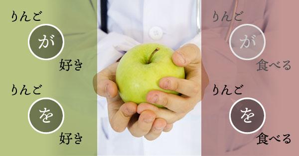 リンゴが好き,りんごを好き,りんごが食べる,りんごを食べる