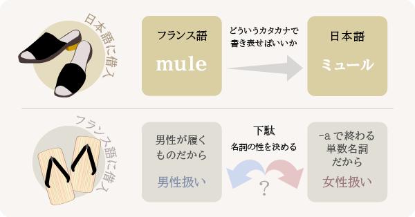 フランス語と日本語,単語の借入の違い